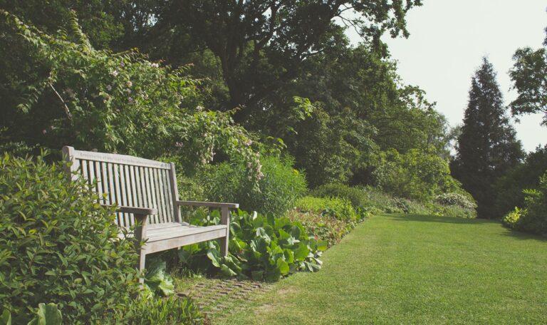 skandynawski ogród